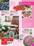 s mmer hallo - Gartencenter Fahr Dornstetten - Seite 3
