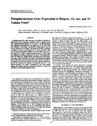 Polygalacturonase Gene Expression in Rutgers ... - Plant Physiology