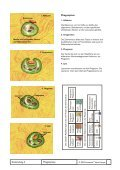Entzündung Mindmap - Seite 5