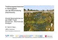 Naturnahes Hochmoor - Deutsche Gesellschaft für Moor