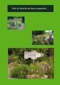 Ein naturnaher Garten an der Drachenfelsschule - Seite 2