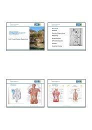 Thoraxschmerz: Evidenzbasierte Diagnostik des Orthopaeden