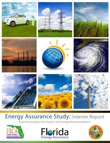 Energy Assurance Study: Interim Report - Southwest Florida ...