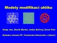 3.2.45 - Centrum Textil - Technická univerzita v Liberci