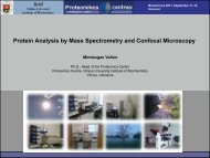 Protein Analysis by Mass Spectrometry and Confocal Microscopy