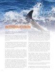 Reporte de Delfines, CAMBIOS2.indd - Page 6