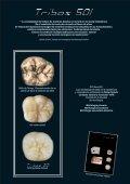 natural - estético - funcional - Bitdental.com - Page 2
