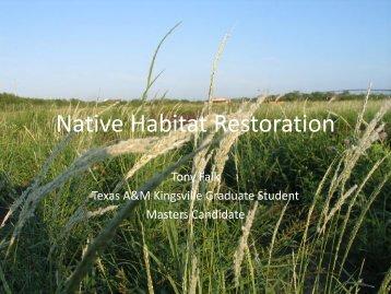 Native Habitat Restoration - Caesar Kleberg Wildlife Research Institute