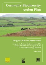 Cornwall's Biodiversity Action Plan - Cornwall Wildlife Trust
