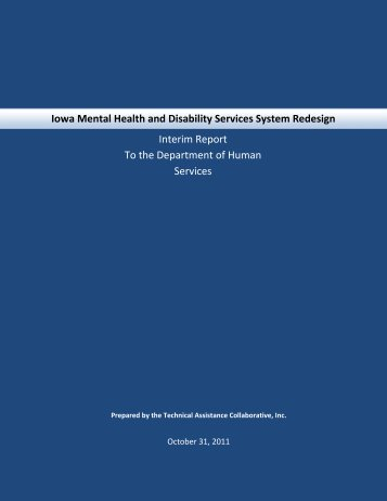 Iowa Mental Health and Disability Services Redesign Interim Report