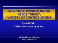 variety of contributions - Bled Forum on Europe