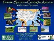 Other Invasive Species - Invasive Plant Control, Inc.