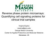 Reverse phase protein microarrays: Quantifying cell signaling ...