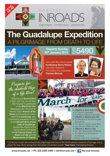 The Guadalupe Expedition - Inroads