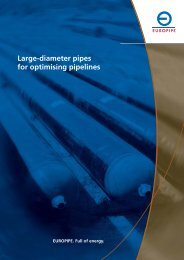 PDF EP/ERS 06/2008 en 750 (781 KB) - Berg Steel Pipe