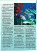 Misi NOD - Portal Rasmi Akademi Sains Malaysia - Page 7