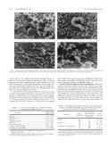 Lactobacillus acidophilus - Page 4