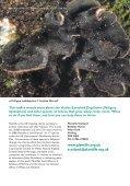23155_Peltigera:ascophyllum leaflet - Plantlife - Page 2