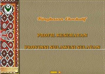 provinsi sulawesi selatan tahun 2011