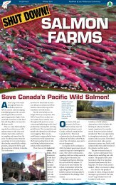 Shut Down Salmon Farms - Wilderness Committee