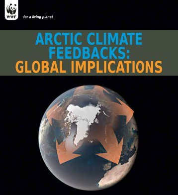 Arctic Climate Feedbacks: Global Implications - Global Carbon Project