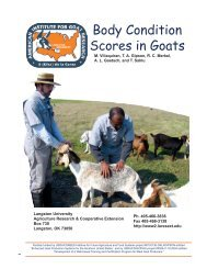 Goat Guideline for Anthelmintic Dosages