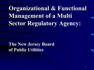 Organizational & Functional Management of a Multi Sector ...