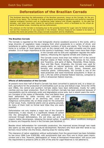 NSC Factsheet 1 Defo cerrado (FINAL December 2008)