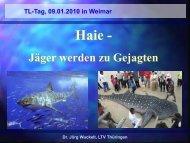 Meeeresbiologie, Haie – Jäger werden zu Gejagten - LTVT