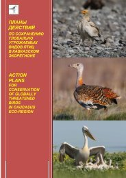 планы действий - Сибирский Экологический Центр