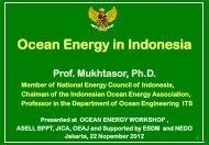 Ocean Energy in Indonesia