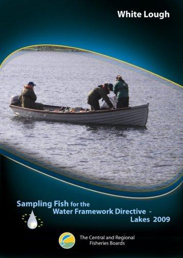 White_mini_report_2009 - Inland Fisheries Ireland