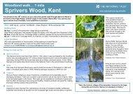 Sprivers Wood - Walk4Life