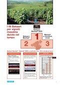 I fili per vigneti Bekaert garantiscono durata e resistenza nel tempo ... - Page 4