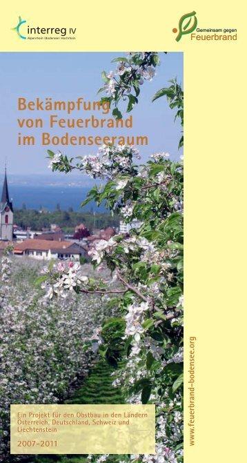 Bekämpfung von Feuerbrand im Bodenseeraum - Bayerische ...