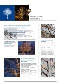 PROFESSIONELE SFEERVERLICHTING - Page 7