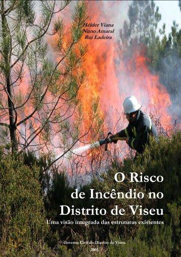 O Risco de Incêndio no Distrito de Viseu Uma visão integrada das ...