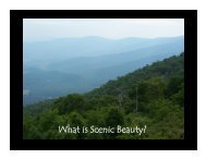 What is Scenic Beauty? - Ideal.forestry.ubc.ca
