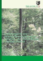 Empfehlungen für eine naturnahe Bewirtschaftung von Buchenrein ...