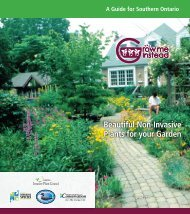 Southern Ontario Grow Me Instead Brochure - Invading Species