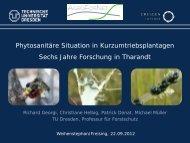Georgi_Phytosanitäre Situation in Kurzumtriebsplantagen.pdf