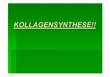 KOLLAGENSYNTHESE!! - Biochemie-trainings-camp.de