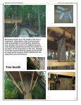 GREENWOOD ENGINEERING - Treehouse Engineering - Page 6