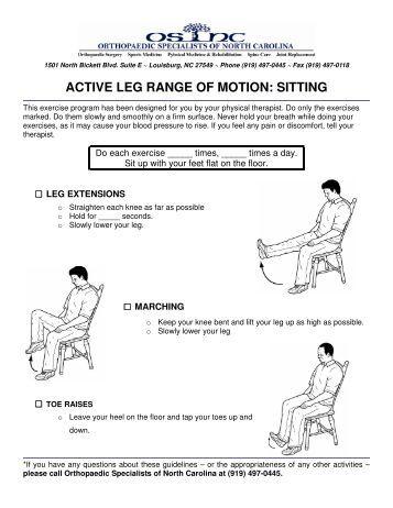 ACTIVE LEG RANGE OF MOTION: STANDING