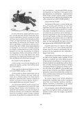 UN MILLAR DE CATóLICOS ENVíA UNA CARTA A MUNILLA ... - Page 2