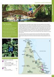 Daintree and Cooktown - Sunlover Holidays