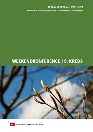 Program for konferencen