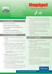 Muscle and Joint Relieving Gel - Greyhound Products Direct
