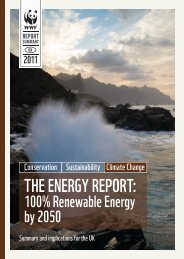 THE ENERGY REPORT: - WWF UK