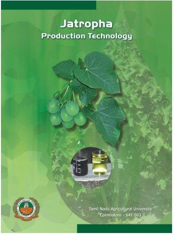 Jatropha - Tamil Nadu Agricultural University